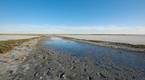 Озеро Эльтон. Фото Эльтона. Экспедиция на Эльтон весной. Озеро Эльтон фотографии. Туры в Волгоградскую область из Москвы