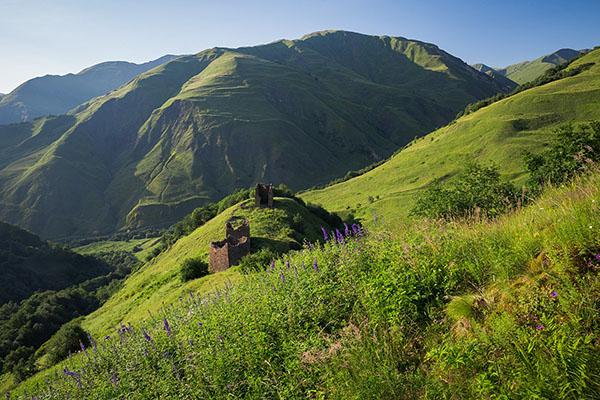 Экскурсии Горная Чечня туры Терлойское ущелье Горой