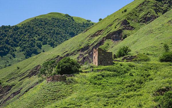 Экскурсии Горная Чечня туры Терлойское ущелье Оьшни