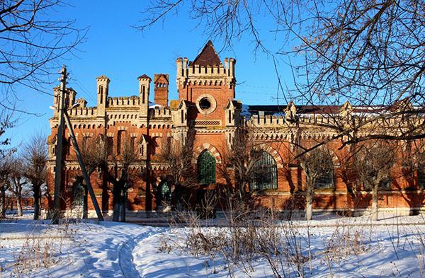 Рязанская область Старожиловский конезавод зимой. Starozhilovo winter