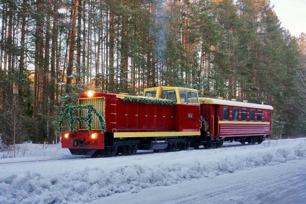 Каринская УЖД зимой Каринторф. Туры в Кировскую область из Москвы