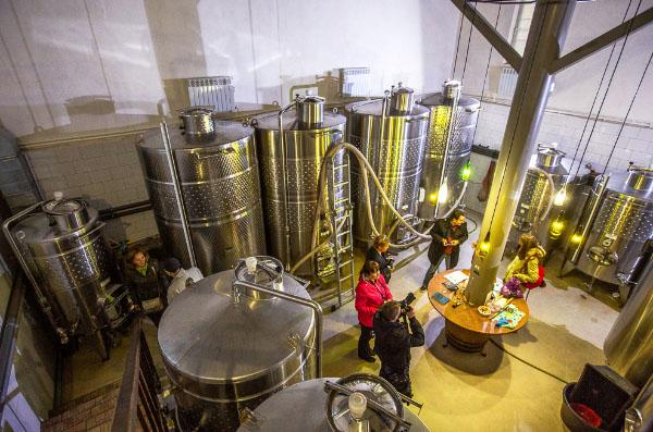 Винные Туры Дон 2021 Цимлянск виноградники Саркел Ростовская область
